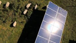 Low Carbon farming best practice