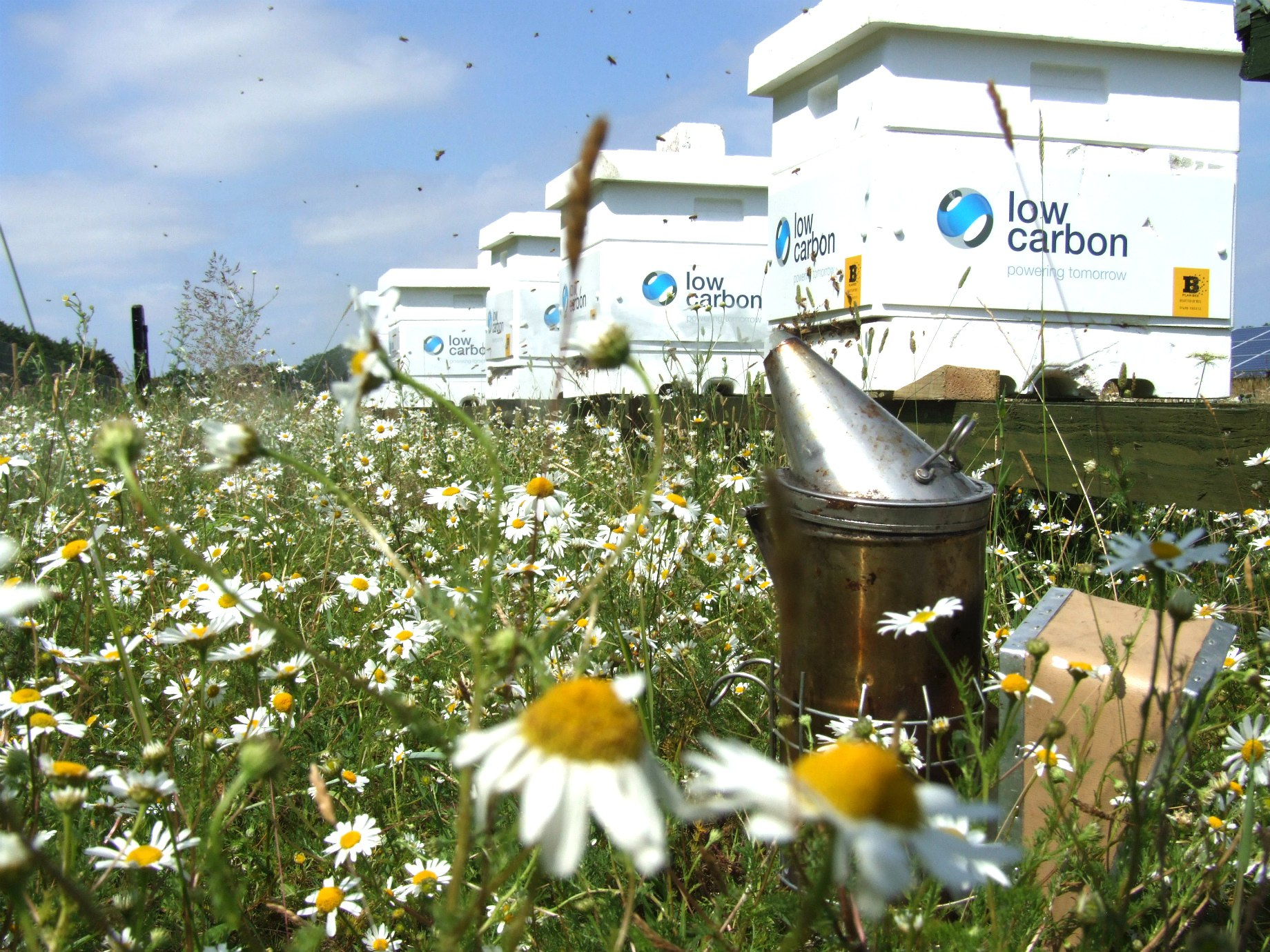 Low Carbon beekeeping